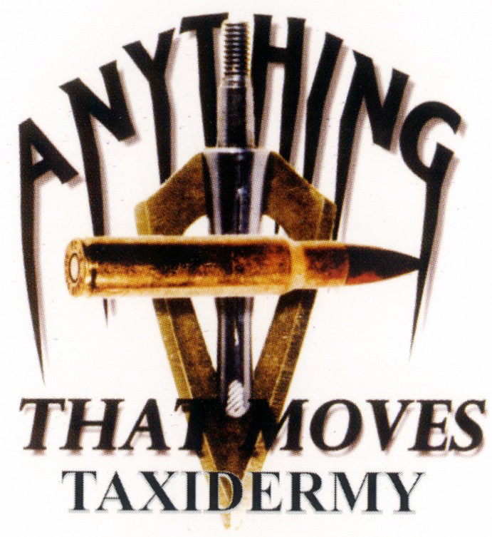 Anything That Moves Taxidermy